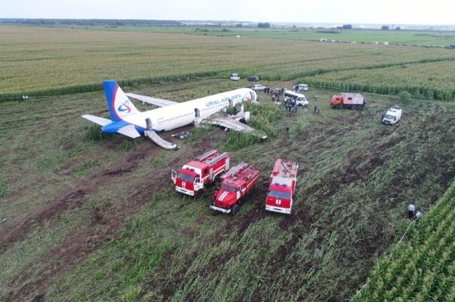 Лётчик не растерялся, убрал шасси, выключил двигатели и посадил машину прямо на кукурузное поле.