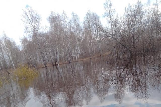 Село Птицкое.