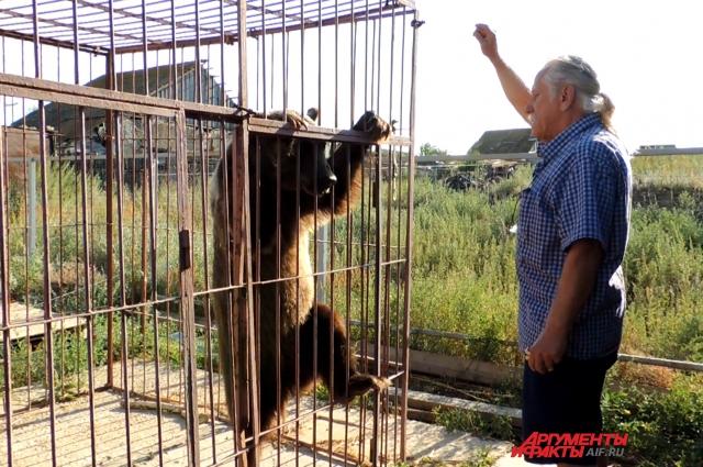 Дрессировать медведей Павел Кудря продолжает и на хуторе