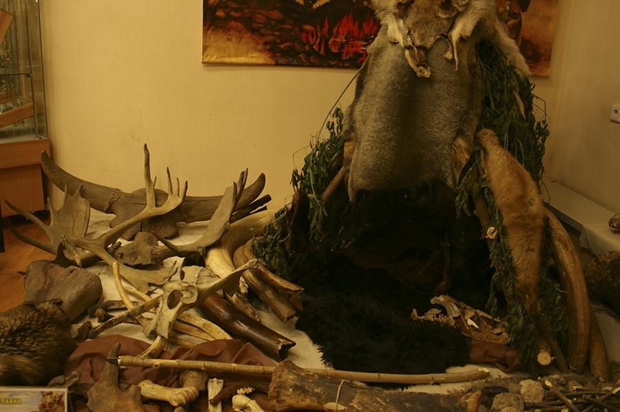 Жилище строилось из дерева, костей и шкур.