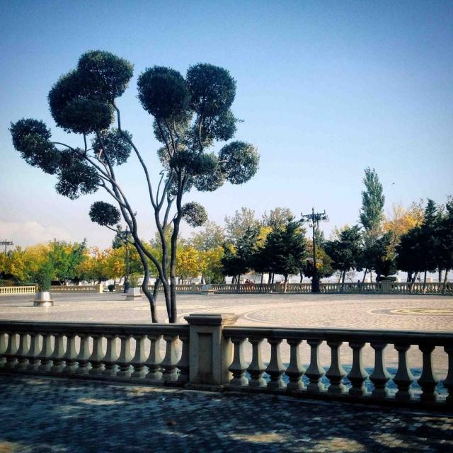Баку удостоен в 2010 году Программой ООН по окружающей среде (UNEP) звания одного из главных городов по проведению Всемирного дня окружающей среды.