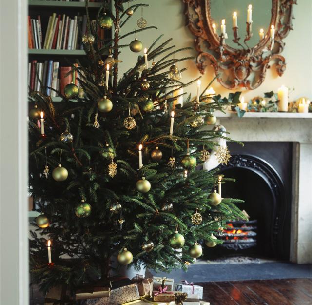 диктант 5 класс новогодняя елка