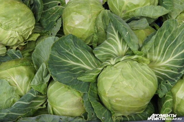 Капуста - овощ простой в приготовлении.