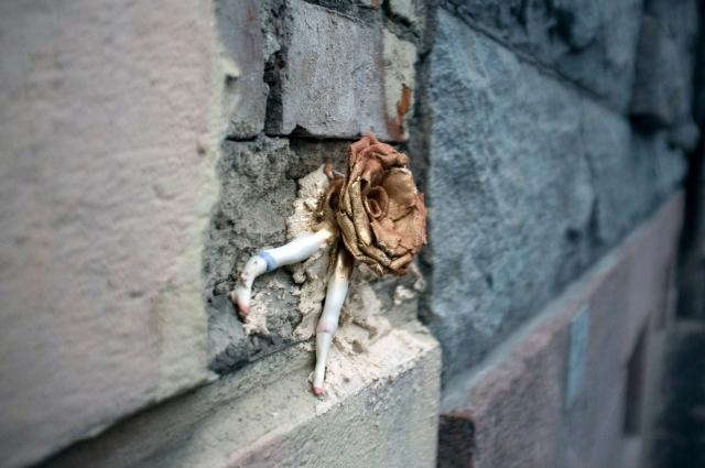 Некоторые куклы ждут новых хозяев в трещинах на фасадах домов.
