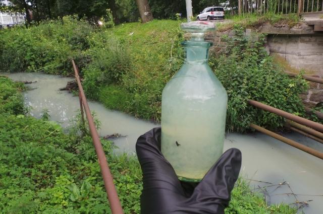 Так выглядит проба воды, взятая из реки Лесная.