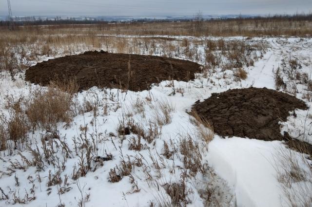 Отходы с птицефабрики прописались вблизи деревень и сёл.