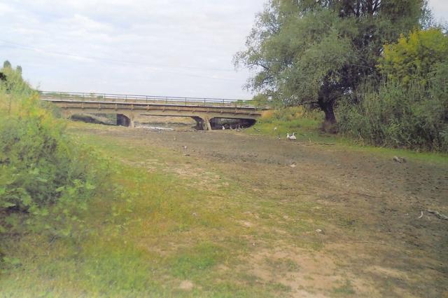 Так речка Лозная выглядела до расчистки в середине 2015 года.