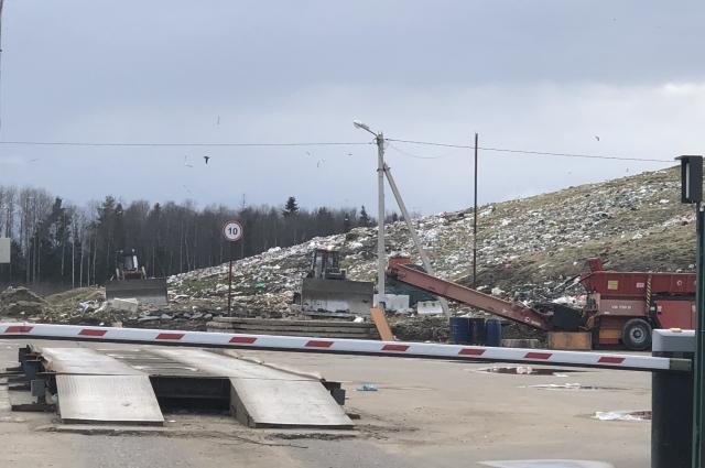 Новый полигон в Славном мало чем отличается от старой свалки.