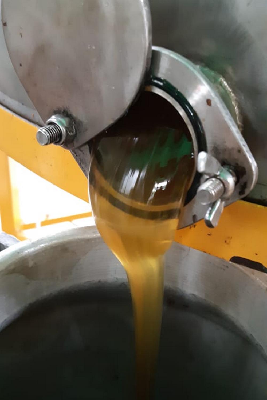 Вкус свежего мёда не передать словами!