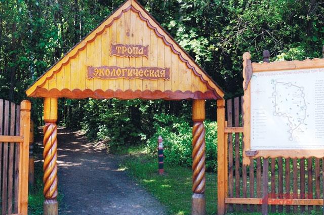 В Битцевский лес на встречу с 150-летними дубами