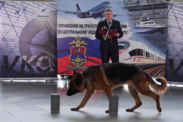 Демонстрация служебных навыков кинологических расчётов аэропорта Внуково.