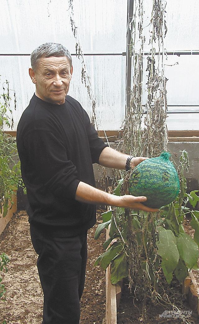 Агроном Бочарников показывает путинский арбуз