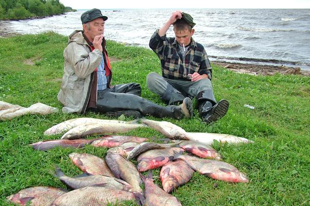Чемпионаты по спортивной рыбалке пользуются у пензенцев большой популярностью.