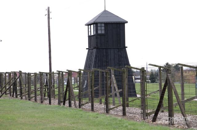 Вышки над лагерем потемнели от времени, дерево стало угольно-чёрным. 73 года назад на каждой стояли по два охранника СС, наблюдая за Майданеком.