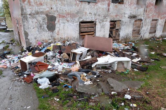 На помойке поселились крысы, которые пугают жильцов улицы.