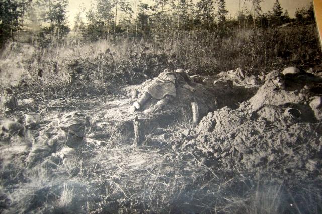 Моглино после ухода фашистов.