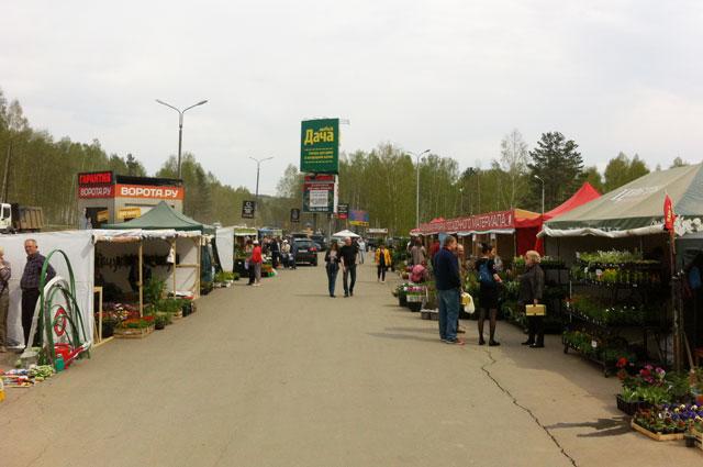 Магазин Новая дача