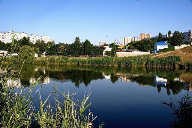 Верховья реки Темерник. Со временем здесь должен появиться благоустроенный экологический парк.