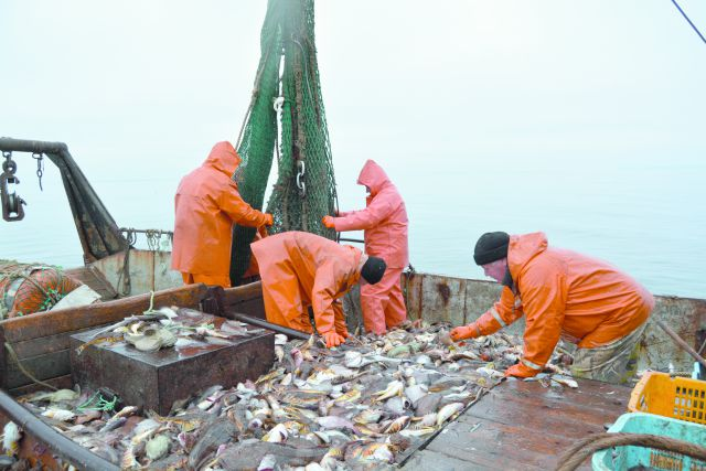 Приморской рыбы ждут во всей России.