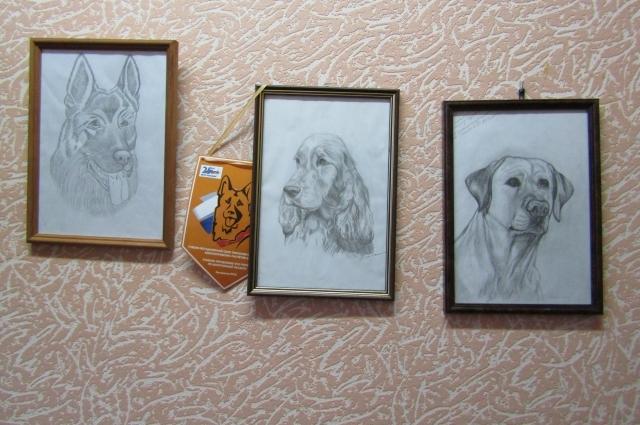 В кабинете кинологов на стене висят даже портреты собак. На рисунке слева – та самая Янка, погибшая при исполнении служебного долга.