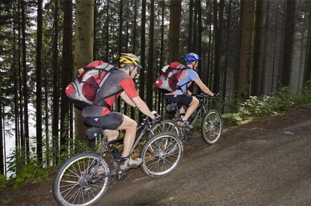 Для каждого стиля катания можно подобрать свой, уникальный велосипед