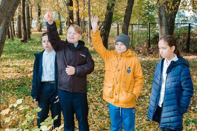 Ребята с радостью тянутся к знаниям в экограде.