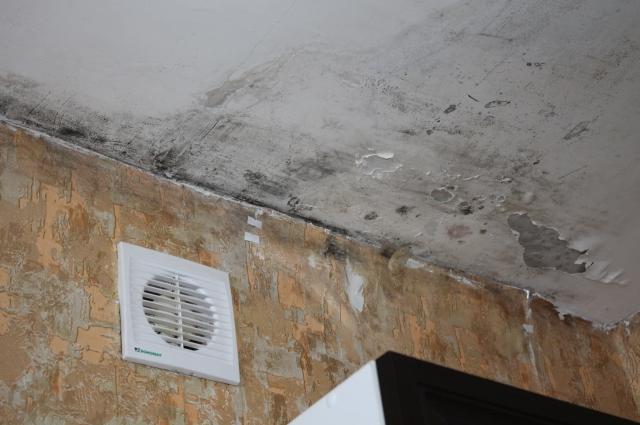 Состояние потолка в доме, которому нет и трёх лет.