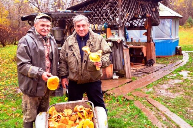 По словам нашего путешественника, в этих местах много вкусных грибов