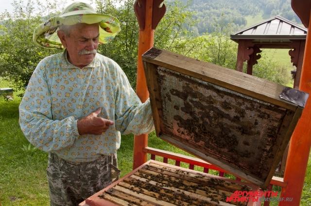 Алтайские пчёлы настолько счастливы, что регулярно играют свадьбы.