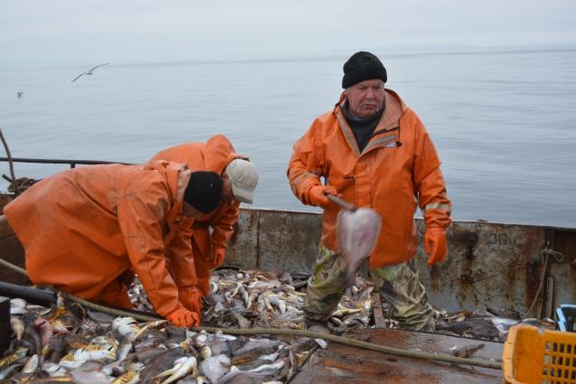 Работать в море приходится в любую погоду - пока рыба идёт.