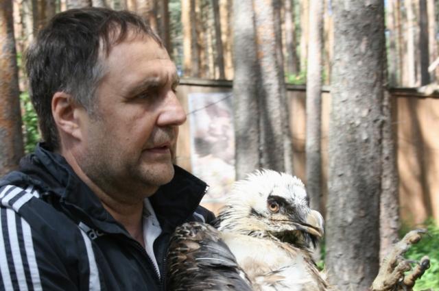 Олег Светлицкий наравне с коллегами ухаживает за больными птицами.