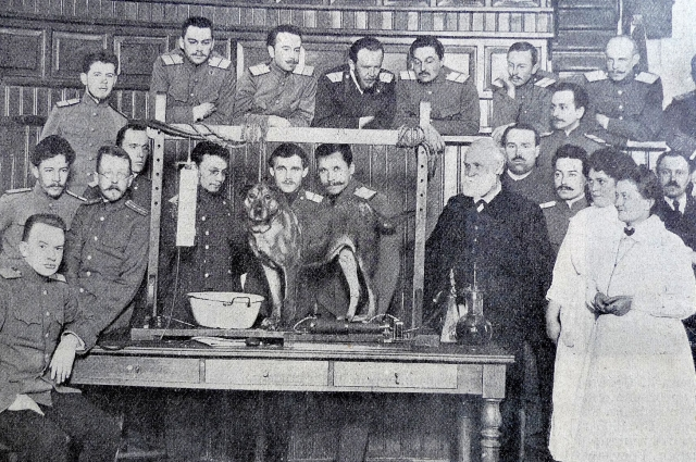 Павлов в Императорской Военно-медицинской академии, 1913 год.