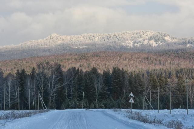 В лесу нет дорожных знаков и указателей, а телефон на морозе разряжается за минуты.