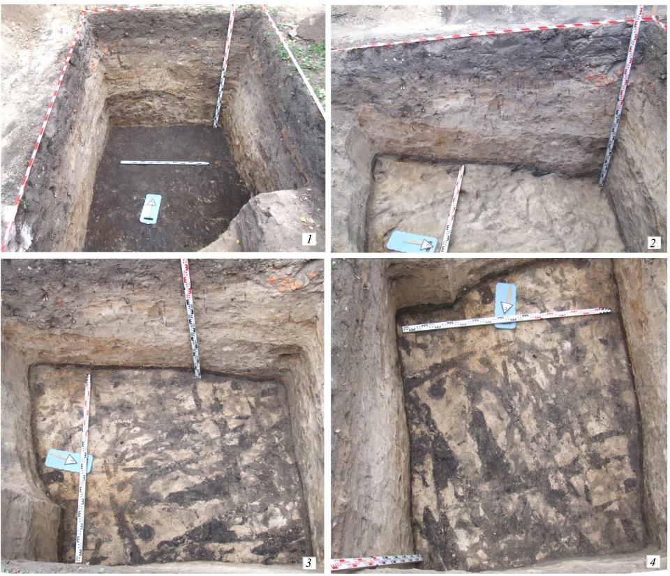 Этот небольшой раскоп может войти в историю: именно здесь археологи нашли нетронутый культурный слой IX века.