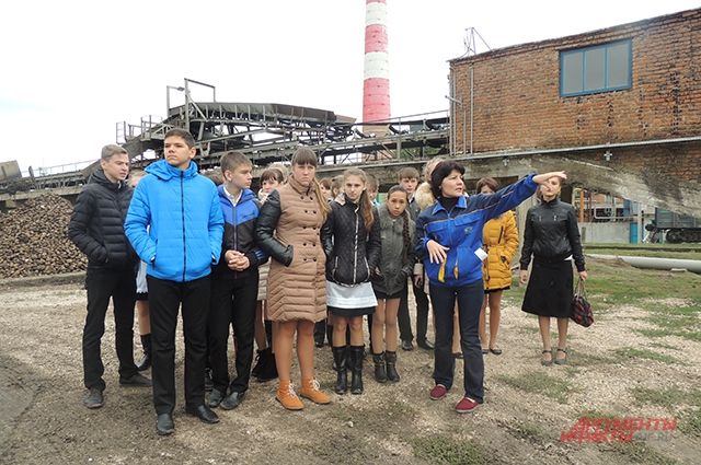 Образовательная экспедиция на сахарный завод понравилась не всем школьникам. Больше детей привлекают фермы, где можно сделать селфи с телятами.