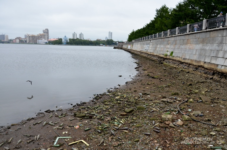 Послу спуска воды дно пруда испугало екатеринбуржцев своим грязным безобразием.