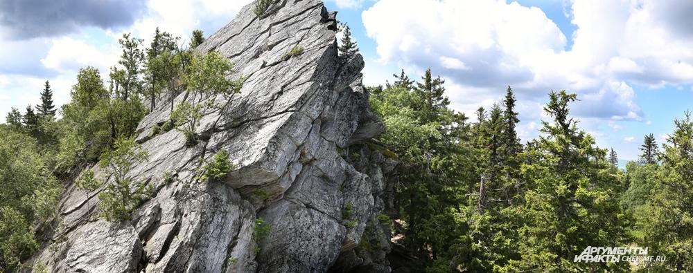 Живописные скалы поросли деревьями.