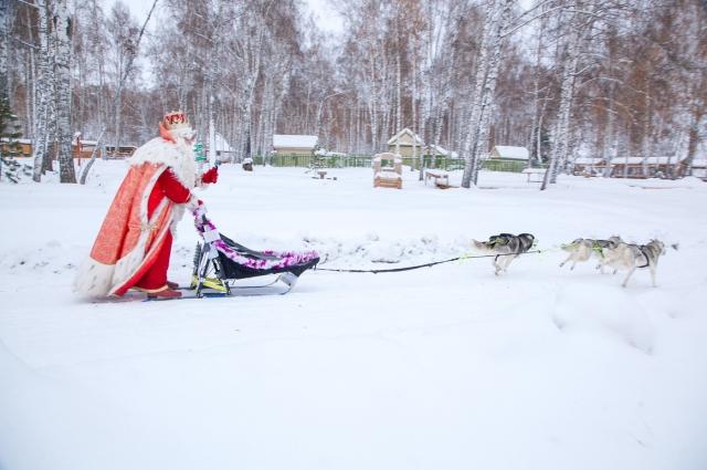 Впереди у Деда Мороза большое путешествие, 27 городов и сотни километров для волшебных вагонов поезда, нагруженных подарками.