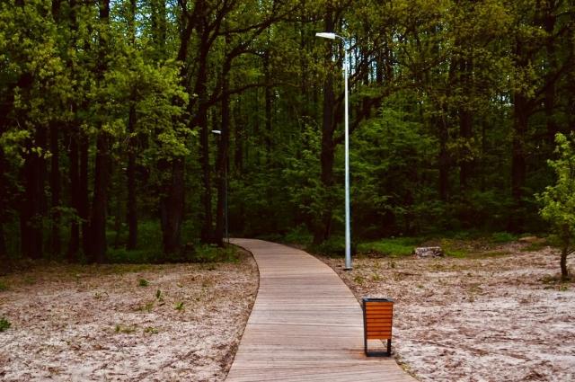 Дорожки, уходящие в лес, полны секретных мест: в лесу прячутся деревянные лежаки и «сенсорные зоны», где можно послушать звуки природы и почитать о флоре и фауне парка.