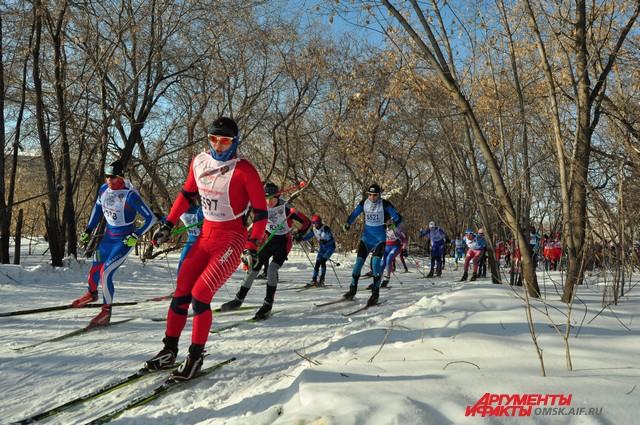 На лыжах можно покататься бесплатно.