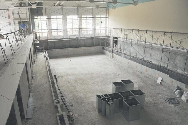 В дятьковском СОКе будет два бассейна - 25 на 11 метров и 10 на 6 метров.