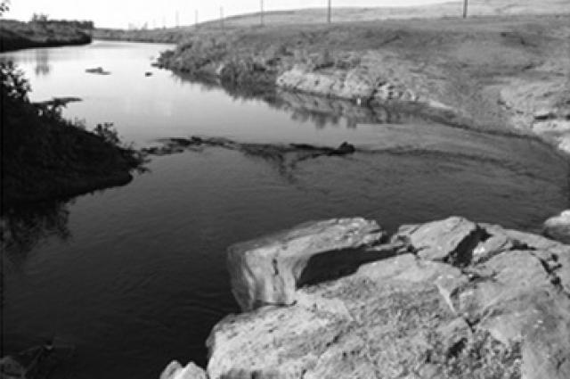 Река Янгиз у села Васильевка.