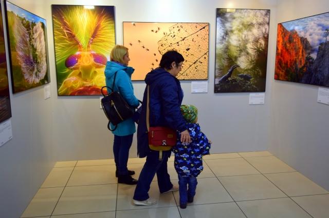Выставка - отличный повод провести выходной со всей семьёй!
