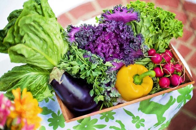 салат, овощи