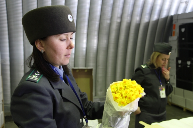 Цветы к нам везут из разных стран.