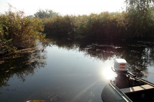 Уже третий год добраться в посёлок Ордынский можно только на лодке.