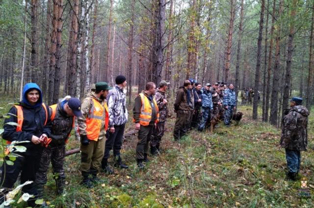 Поиски в Муромцевских лесах.