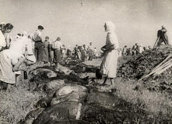 Всех, кто помогал защитникам Родины укрыться, расстреливали на месте