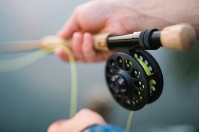 Условие соревнований - рыбу ловят только на спиннинг.