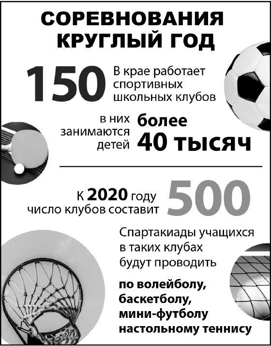 Инфографика спорт